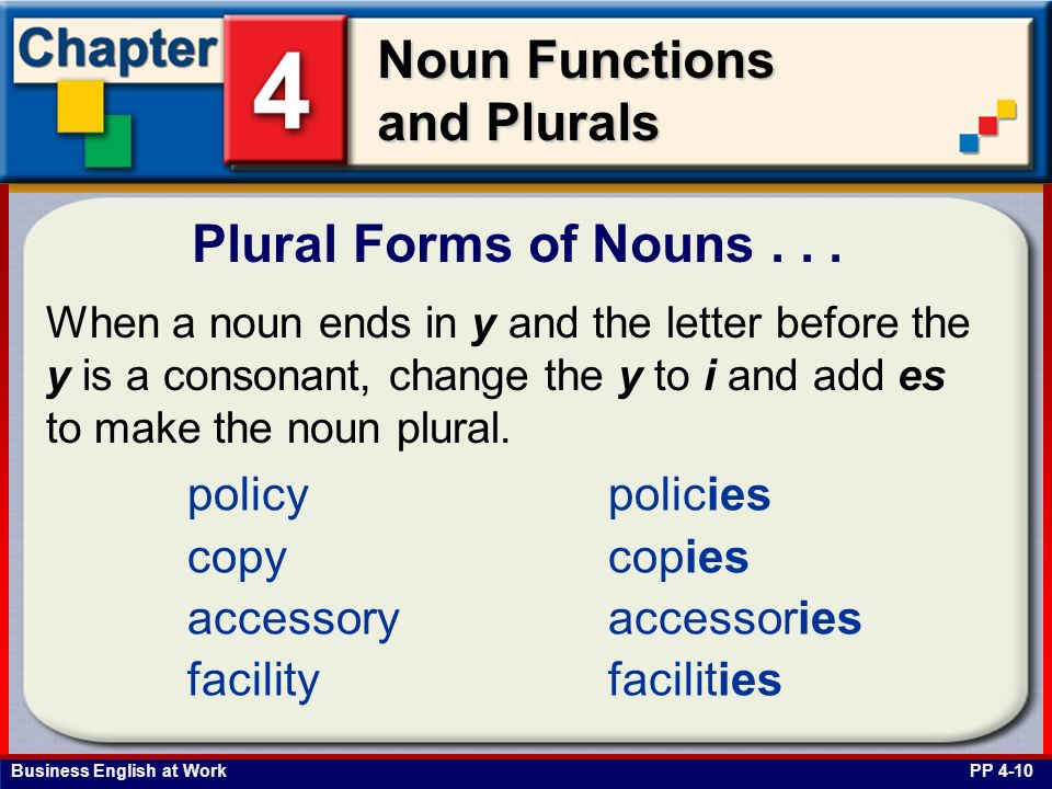 Plural Forms of Nouns . . . policy copy accessory facility policies