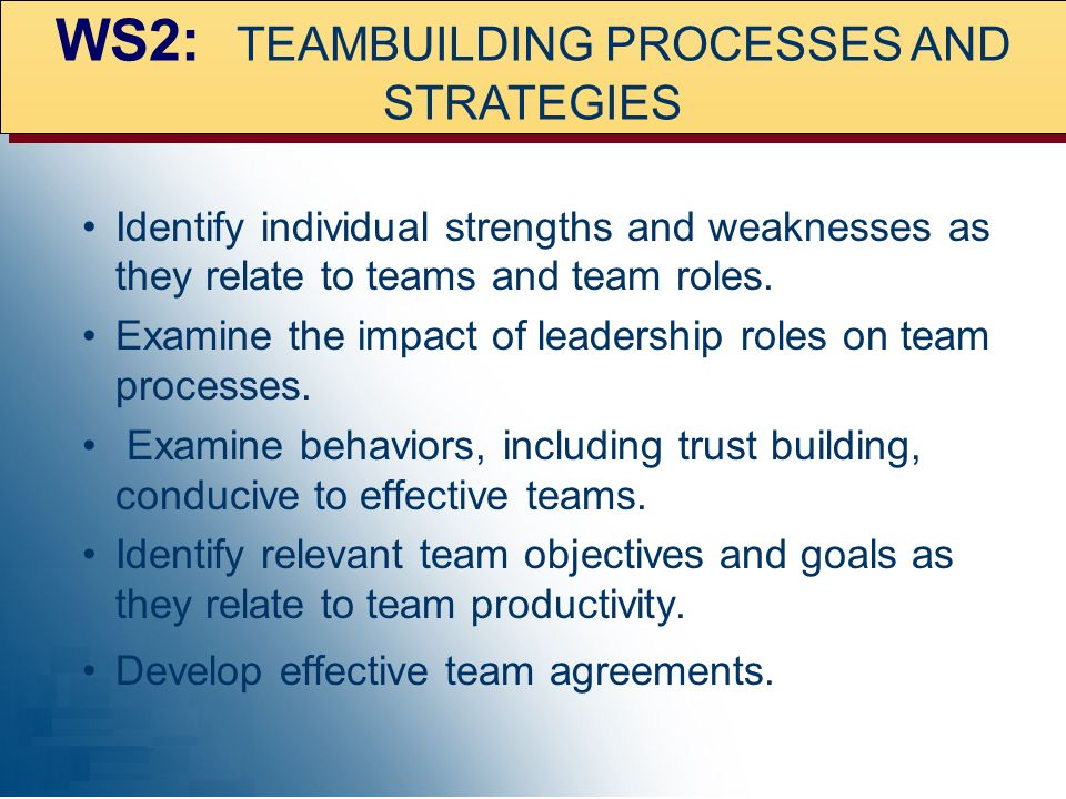 WS2: TEAMBUILDING PROCESSES AND STRATEGIES