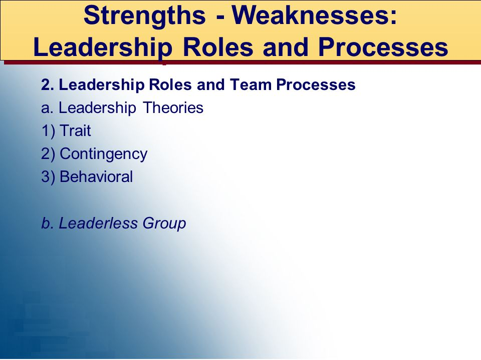 Strengths - Weaknesses: Leadership Roles and Processes