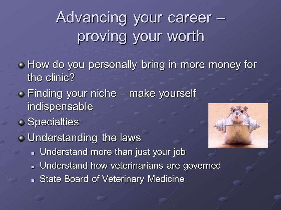 Advancing your career – proving your worth