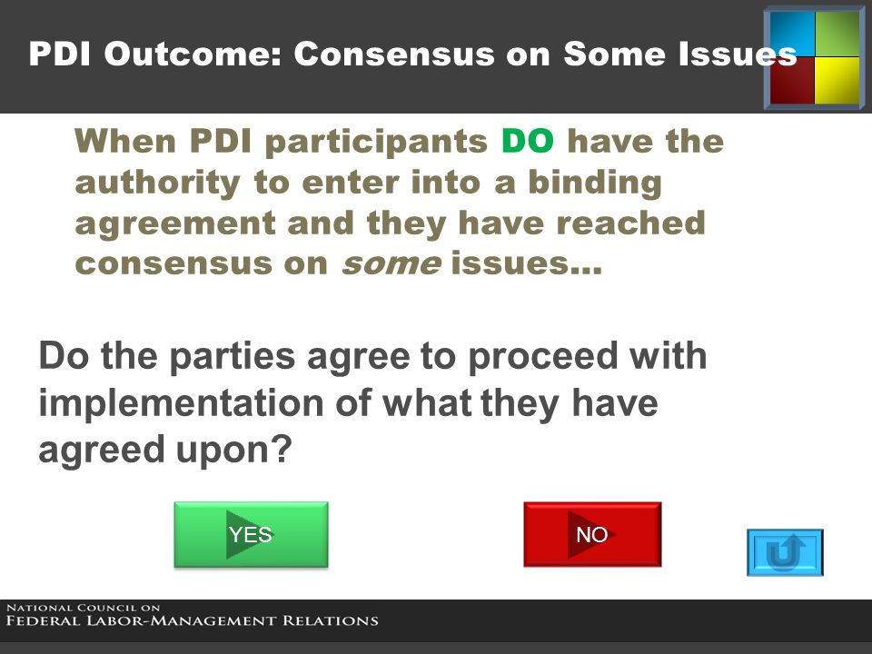 PDI Outcome: Consensus on Some Issues