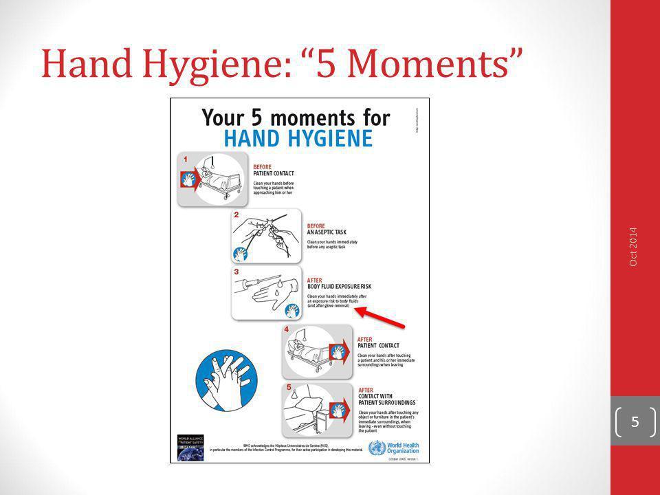 Hand Hygiene: 5 Moments
