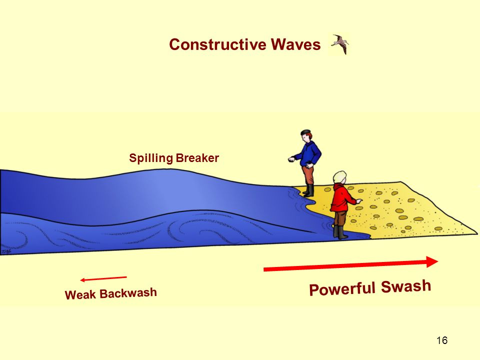 Constructive Waves Spilling Breaker Powerful Swash Weak Backwash