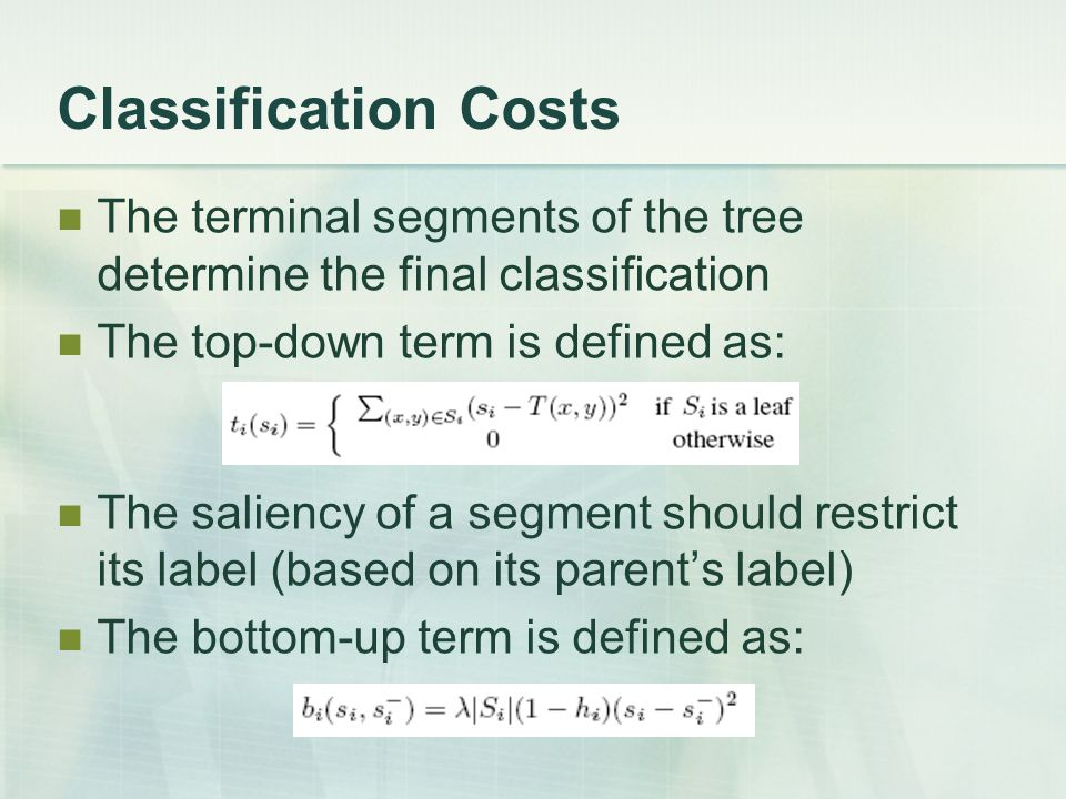 Classification Costs The terminal segments of the tree determine the final classification. The top-down term is defined as: