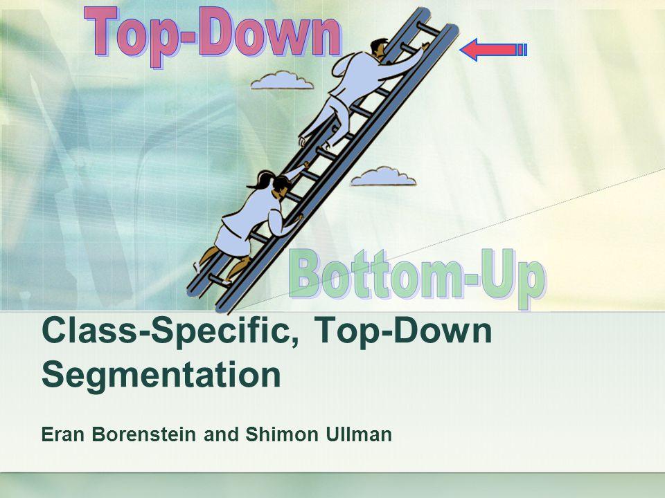 Class-Specific, Top-Down Segmentation