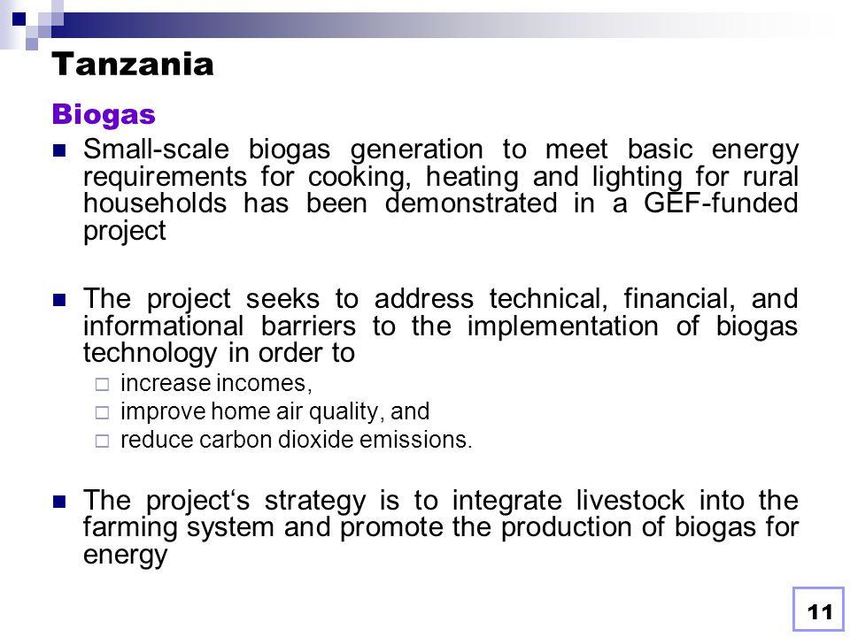 Tanzania Biogas.