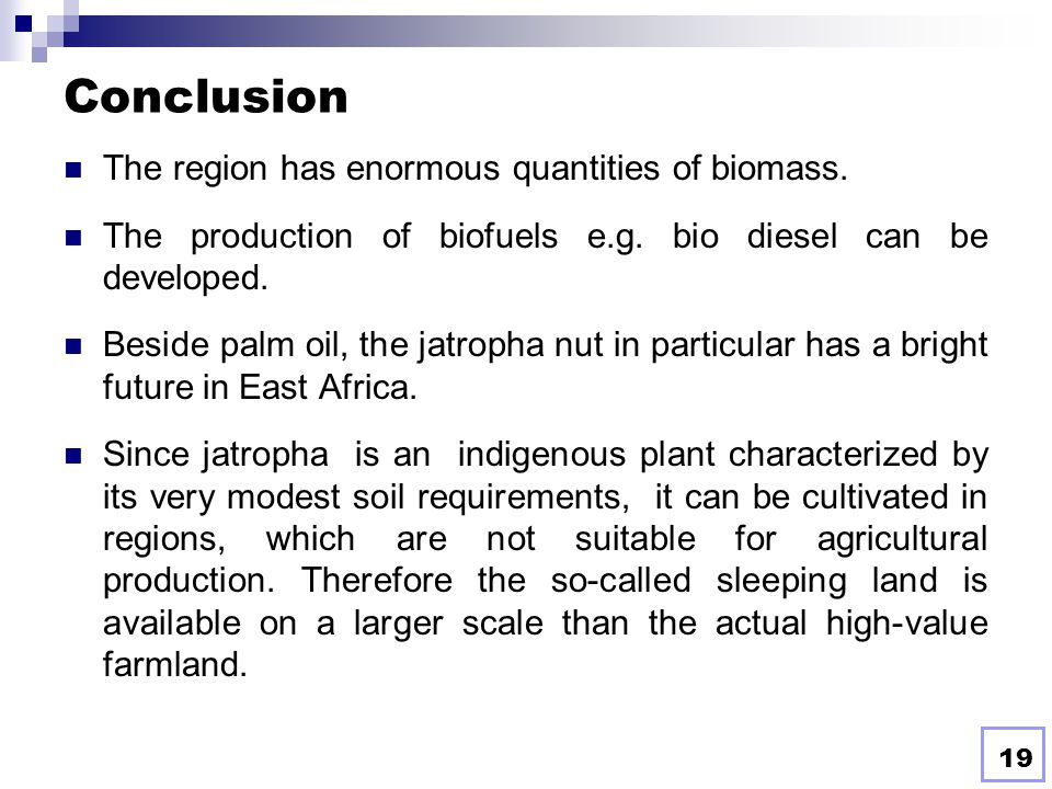 Conclusion The region has enormous quantities of biomass.