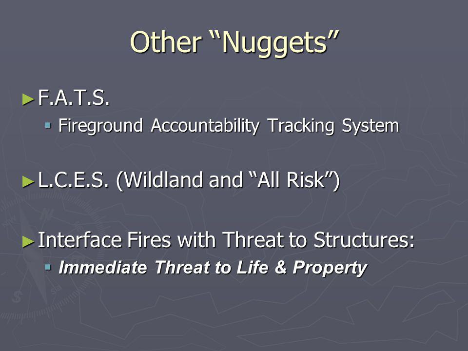 Other Nuggets F.A.T.S. L.C.E.S. (Wildland and All Risk )