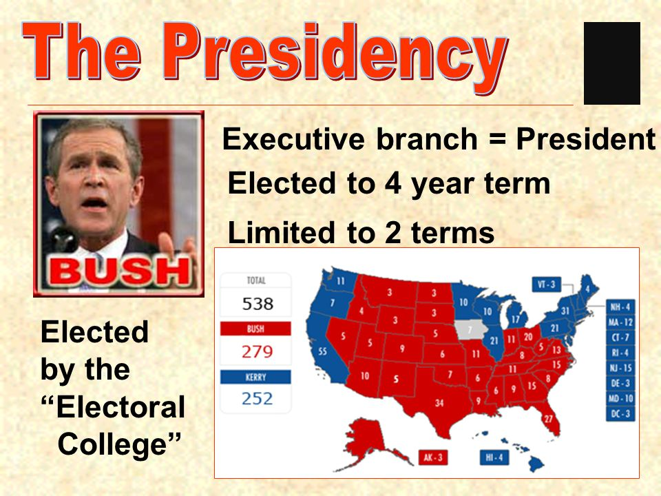The Presidency Executive branch = President Elected to 4 year term