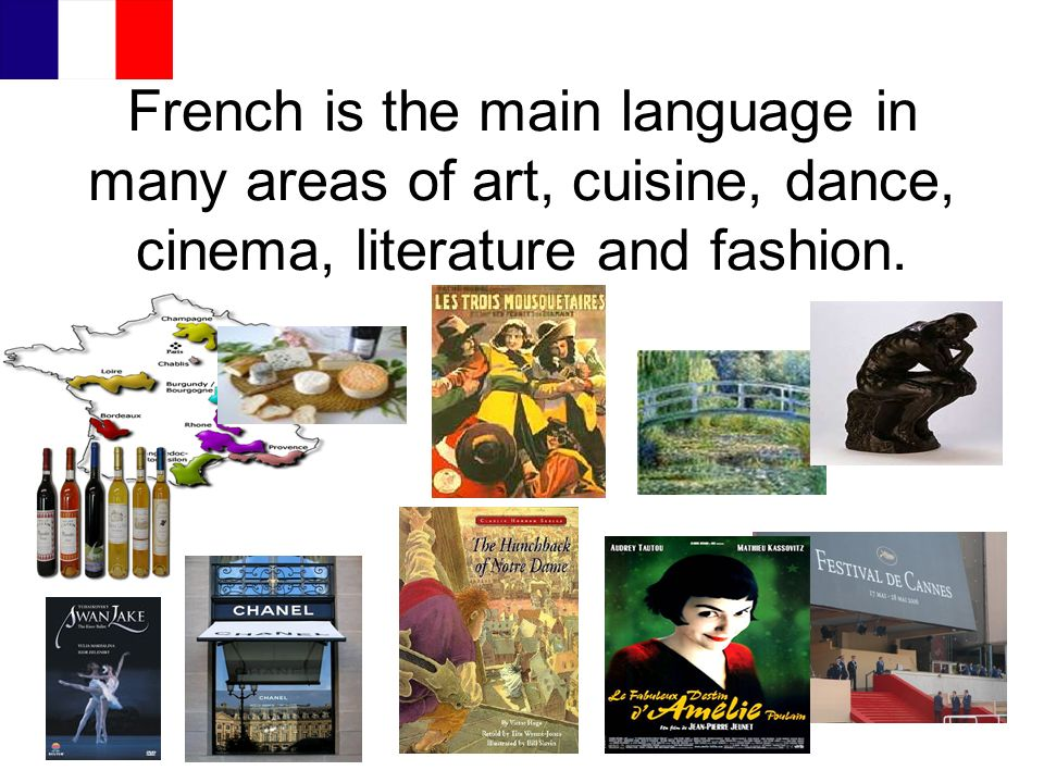French is the main language in many areas of art, cuisine, dance, cinema, literature and fashion.