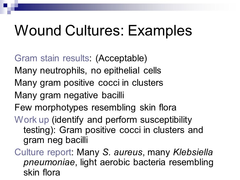 Wound Cultures: Examples