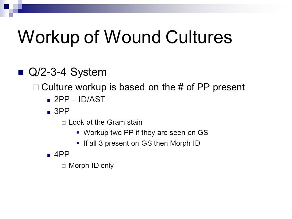 Workup of Wound Cultures