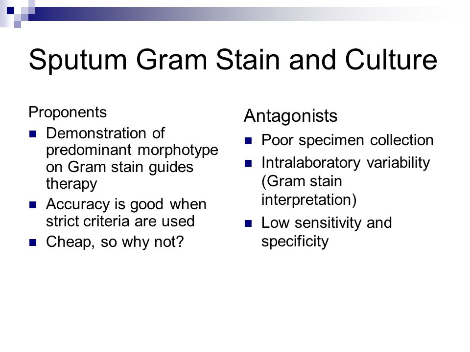 Sputum Gram Stain and Culture