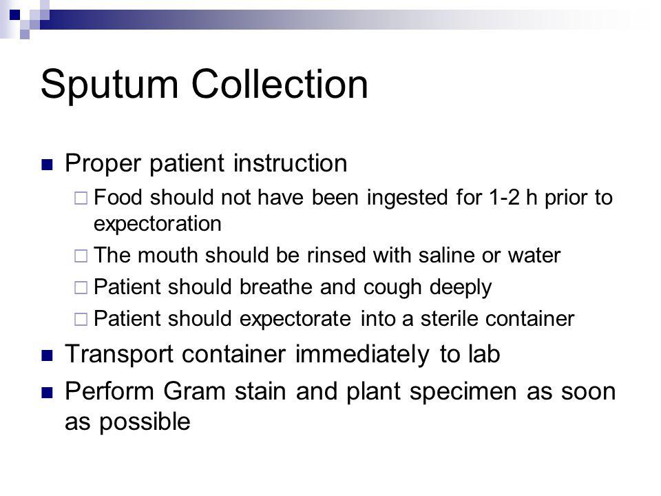 Sputum Collection Proper patient instruction