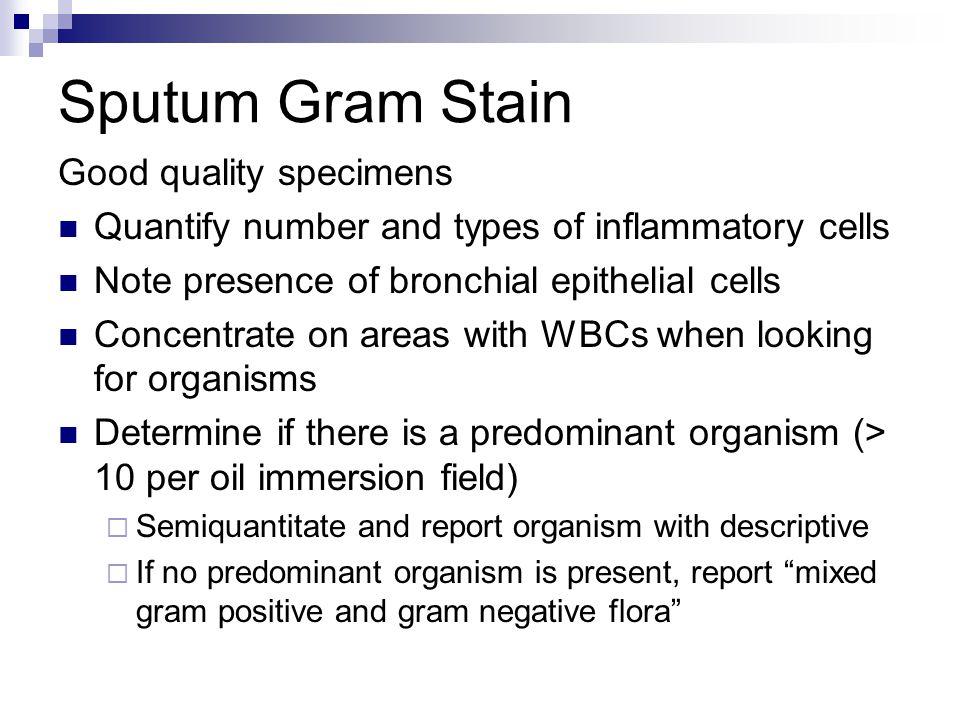 Sputum Gram Stain Good quality specimens