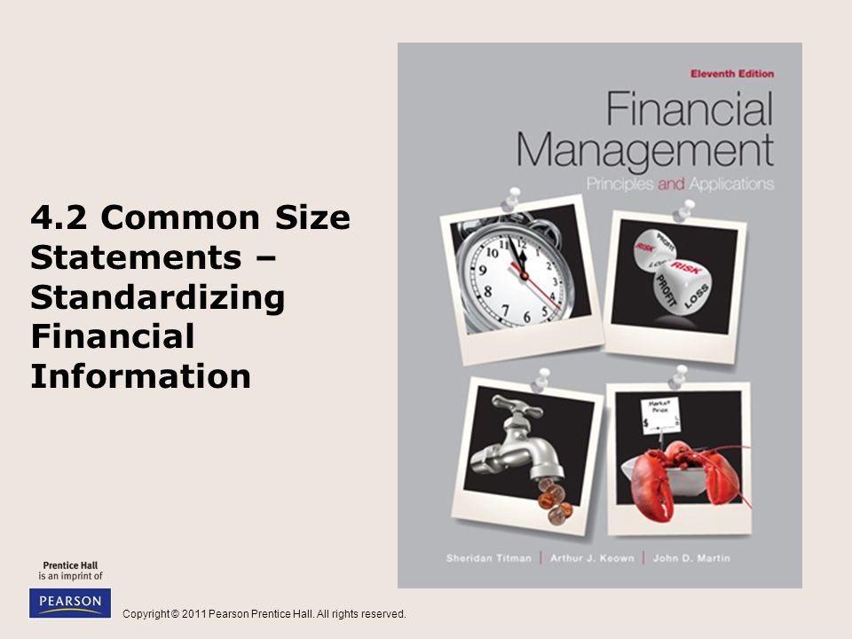 4.2 Common Size Statements – Standardizing Financial Information