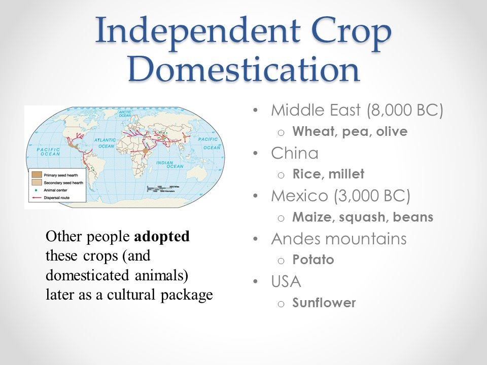 Independent Crop Domestication