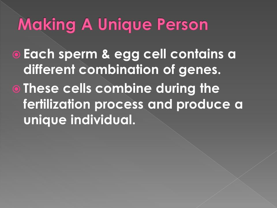 Making A Unique Person Each sperm & egg cell contains a different combination of genes.