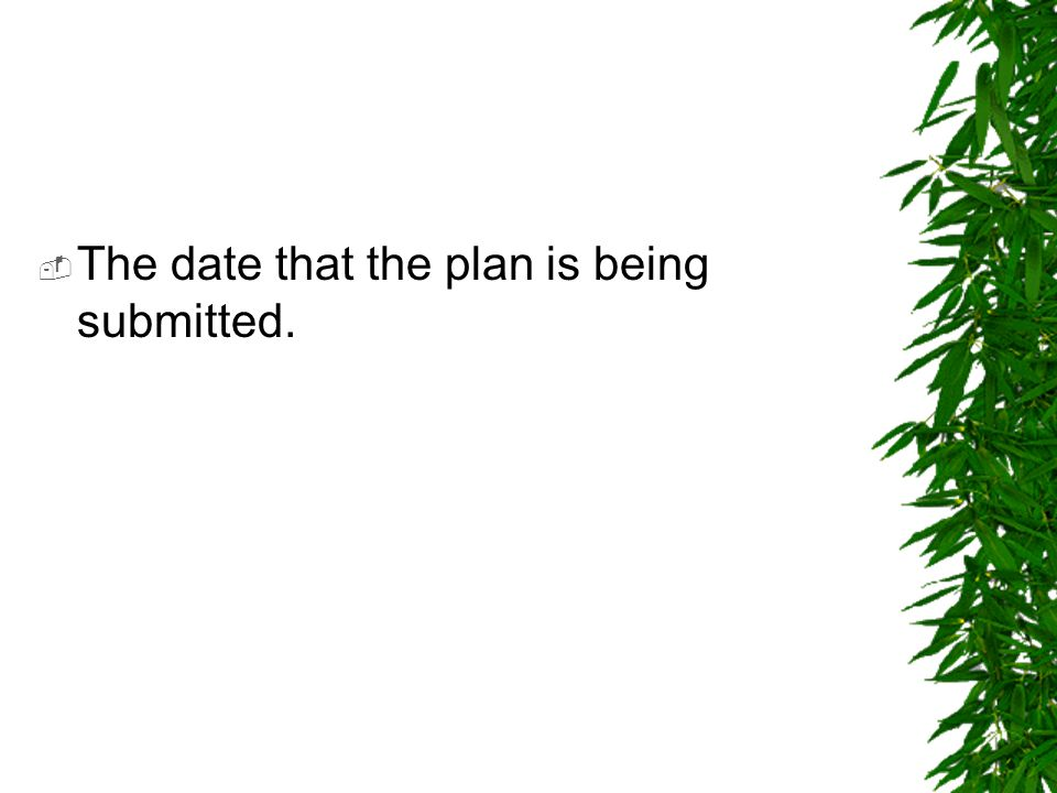 The date that the plan is being submitted.