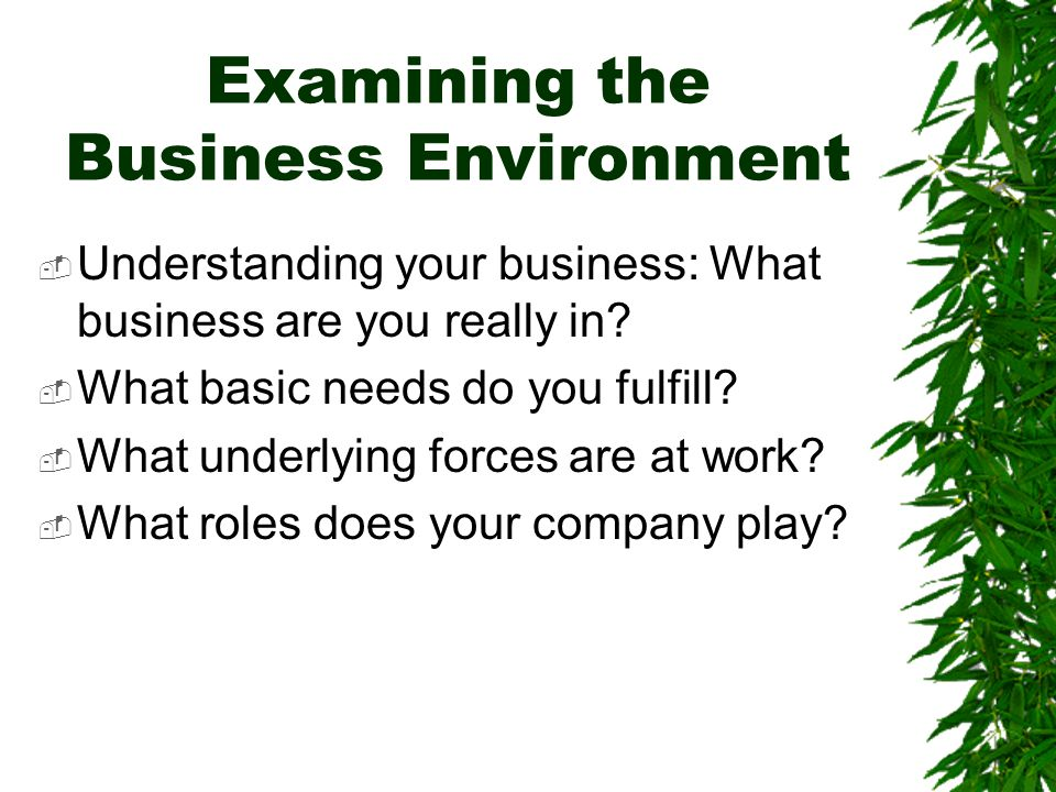 Examining the Business Environment