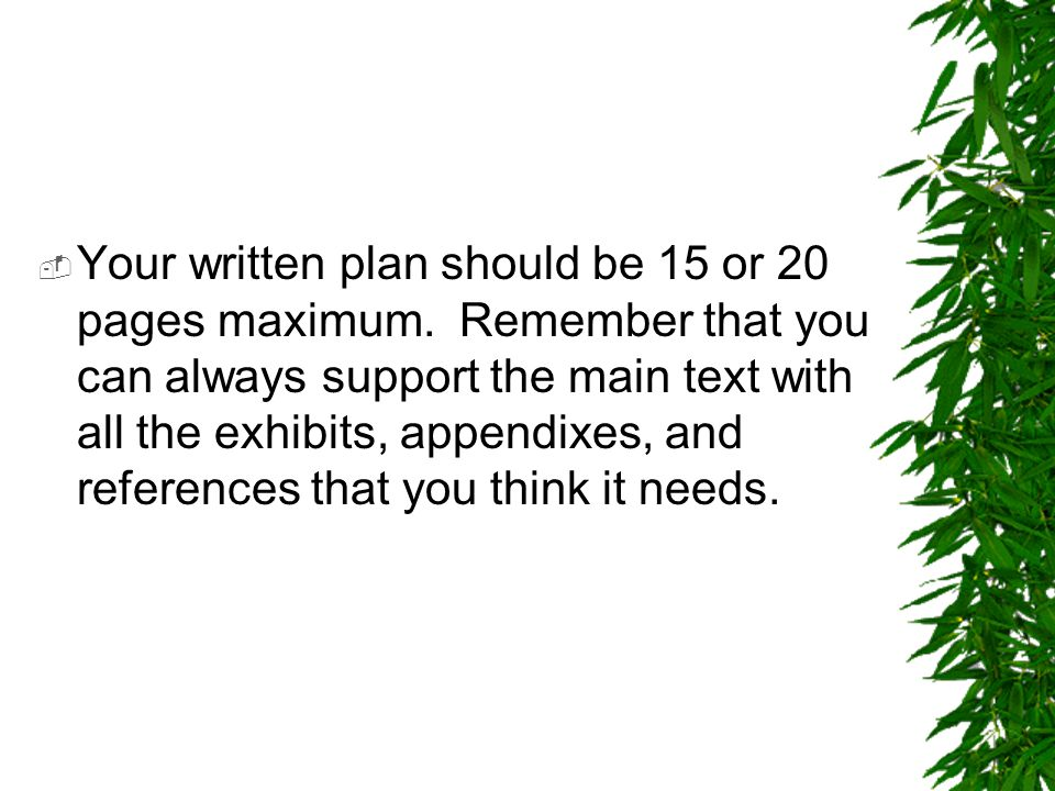Your written plan should be 15 or 20 pages maximum