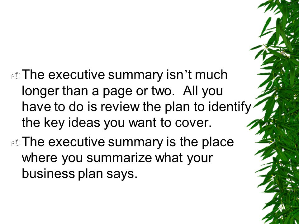 The executive summary isn't much longer than a page or two