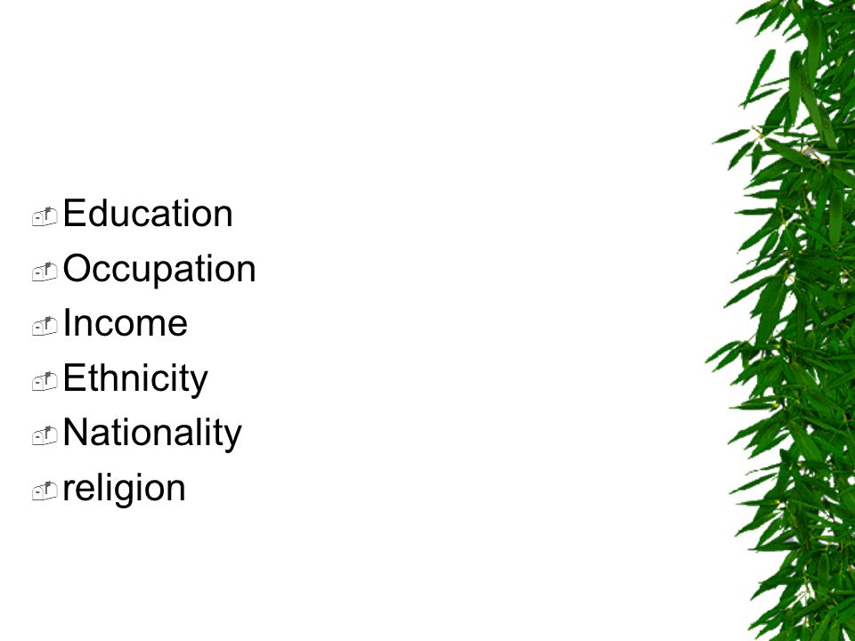 Education Occupation Income Ethnicity Nationality religion