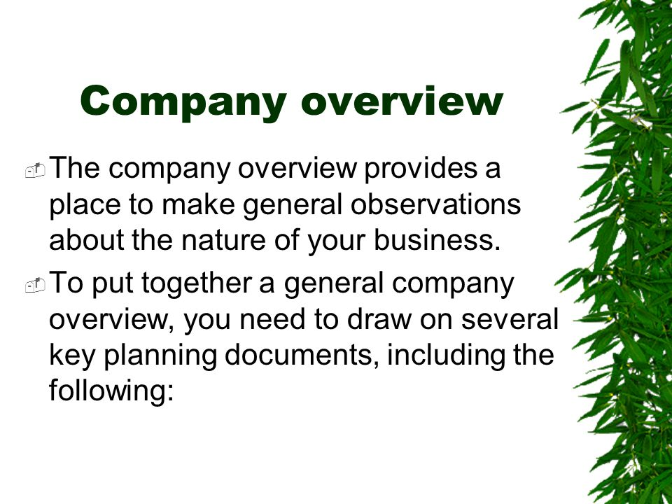 Company overview The company overview provides a place to make general observations about the nature of your business.