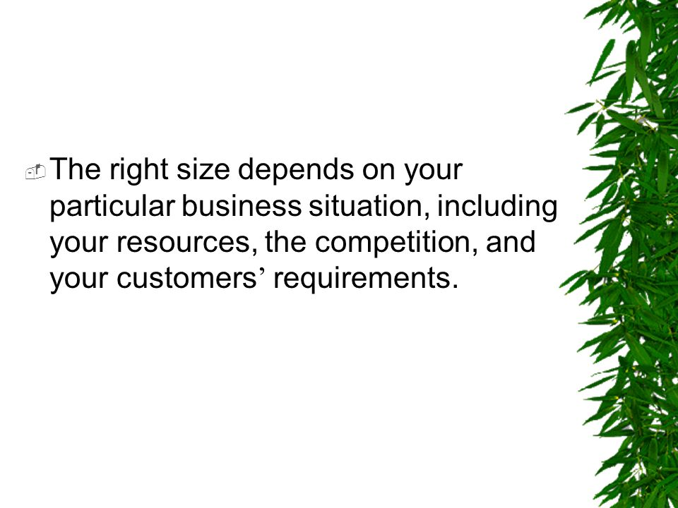 The right size depends on your particular business situation, including your resources, the competition, and your customers' requirements.