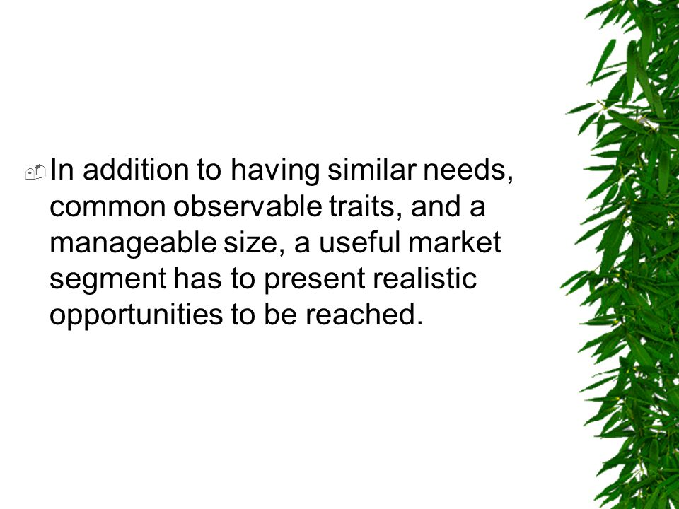 In addition to having similar needs, common observable traits, and a manageable size, a useful market segment has to present realistic opportunities to be reached.