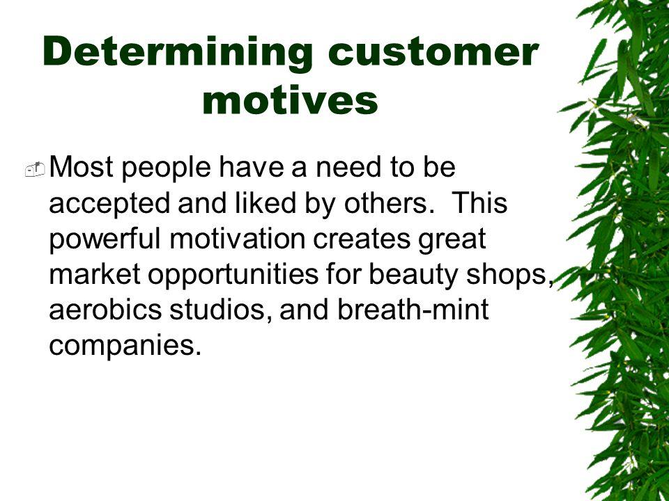 Determining customer motives