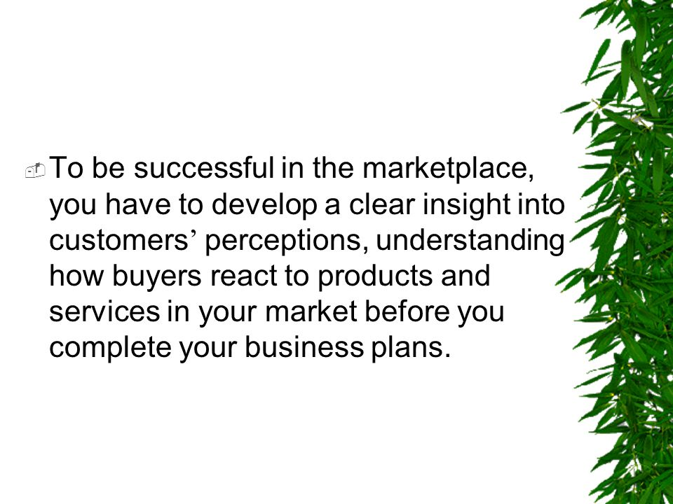 To be successful in the marketplace, you have to develop a clear insight into customers' perceptions, understanding how buyers react to products and services in your market before you complete your business plans.