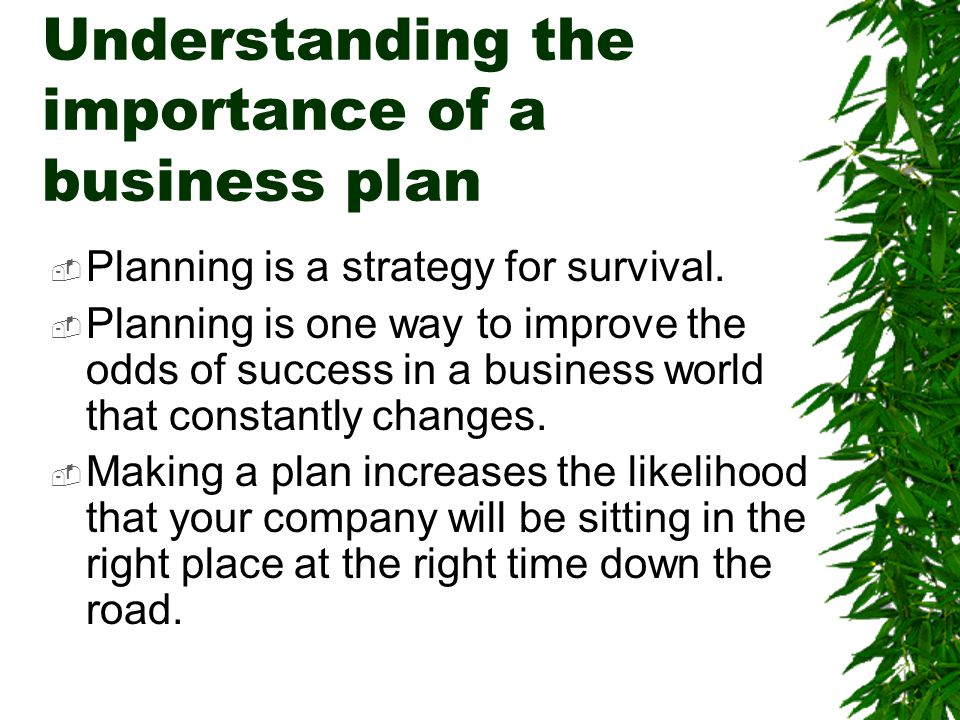 Understanding the importance of a business plan