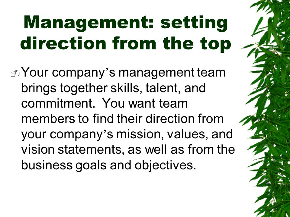 Management: setting direction from the top