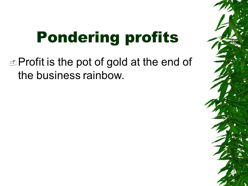 Pondering profits Profit is the pot of gold at the end of the business rainbow.