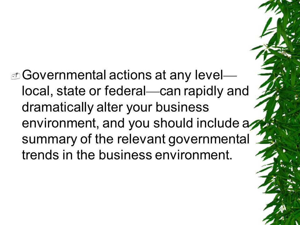 Governmental actions at any level—local, state or federal—can rapidly and dramatically alter your business environment, and you should include a summary of the relevant governmental trends in the business environment.
