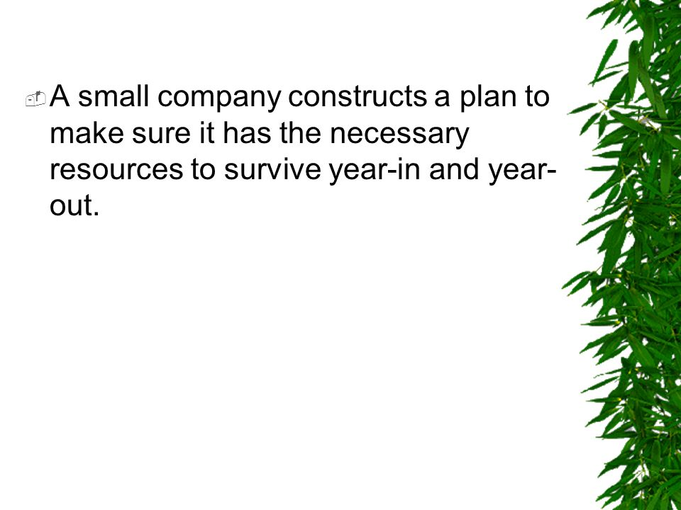 A small company constructs a plan to make sure it has the necessary resources to survive year-in and year-out.