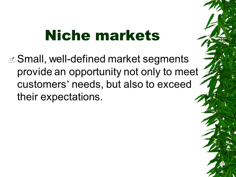 Niche markets Small, well-defined market segments provide an opportunity not only to meet customers' needs, but also to exceed their expectations.