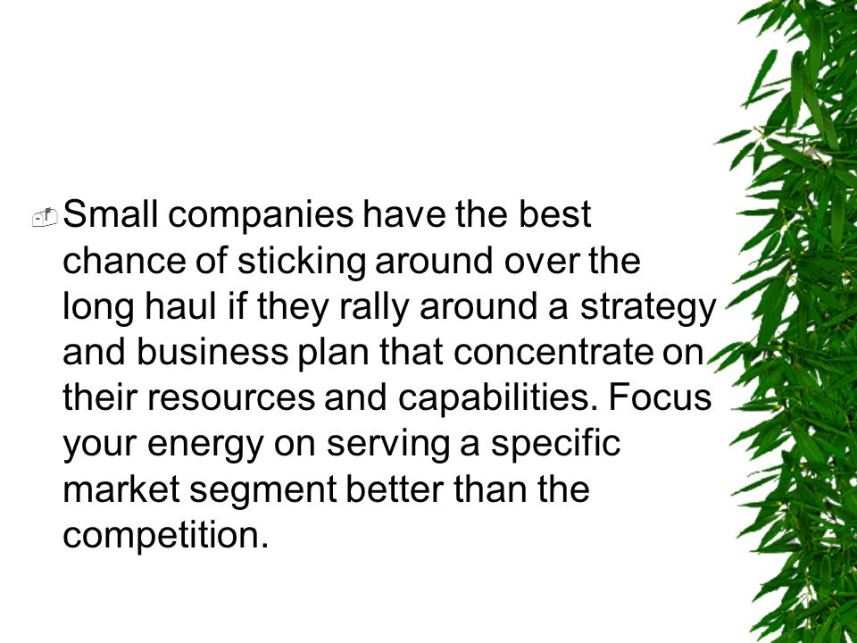Small companies have the best chance of sticking around over the long haul if they rally around a strategy and business plan that concentrate on their resources and capabilities.