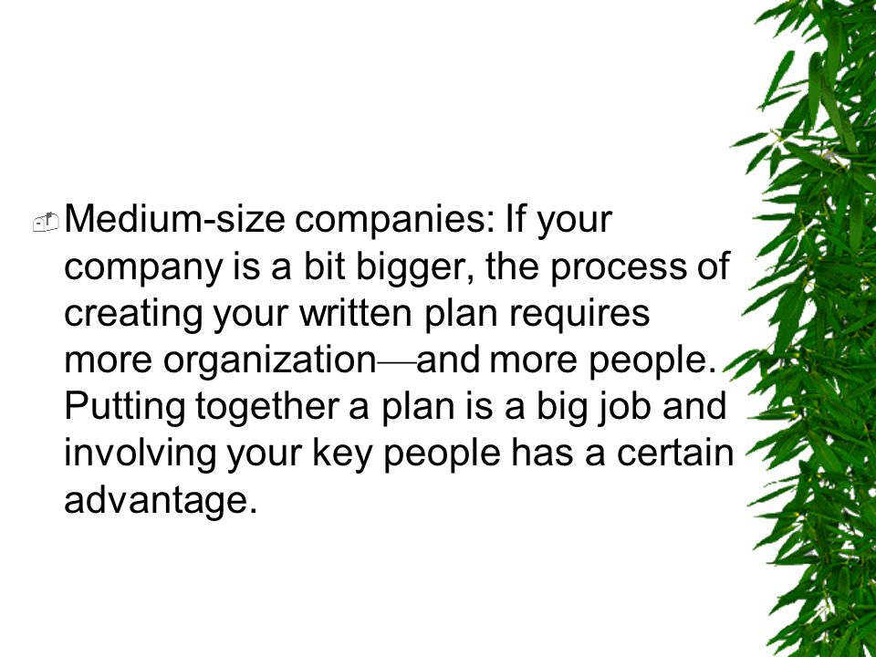 Medium-size companies: If your company is a bit bigger, the process of creating your written plan requires more organization—and more people.
