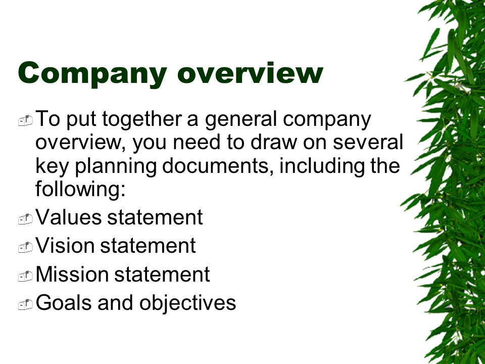 Company overview To put together a general company overview, you need to draw on several key planning documents, including the following: