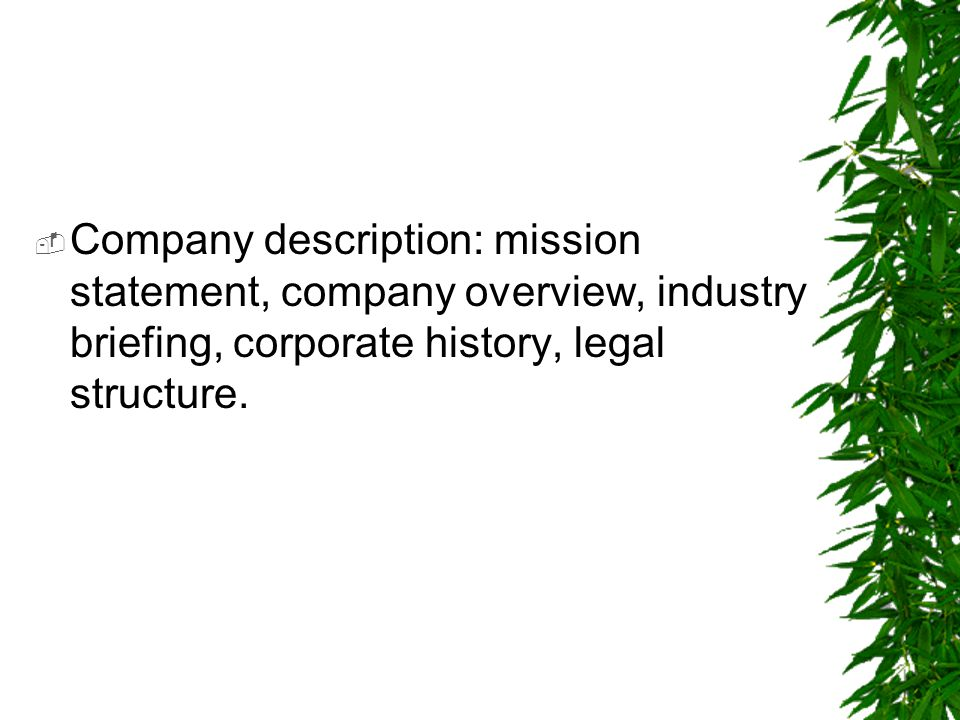 Company description: mission statement, company overview, industry briefing, corporate history, legal structure.