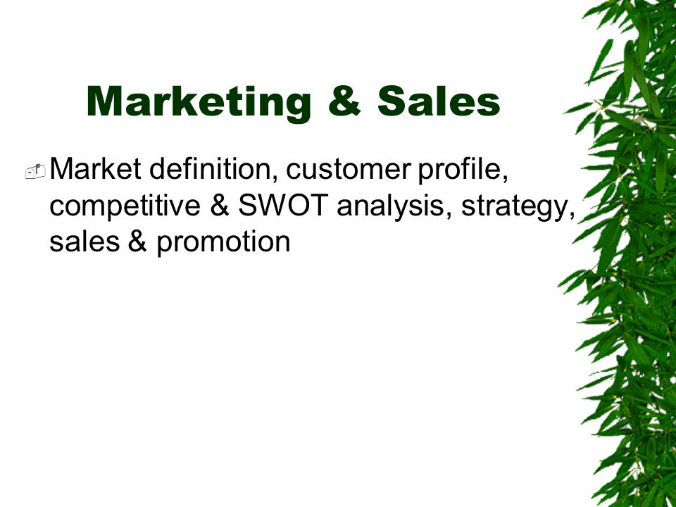 Marketing & Sales Market definition, customer profile, competitive & SWOT analysis, strategy, sales & promotion.