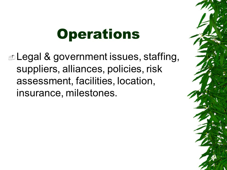 Operations Legal & government issues, staffing, suppliers, alliances, policies, risk assessment, facilities, location, insurance, milestones.