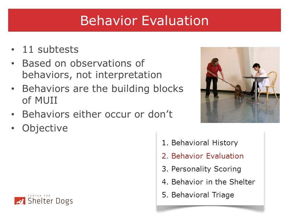 Behavior Evaluation 11 subtests