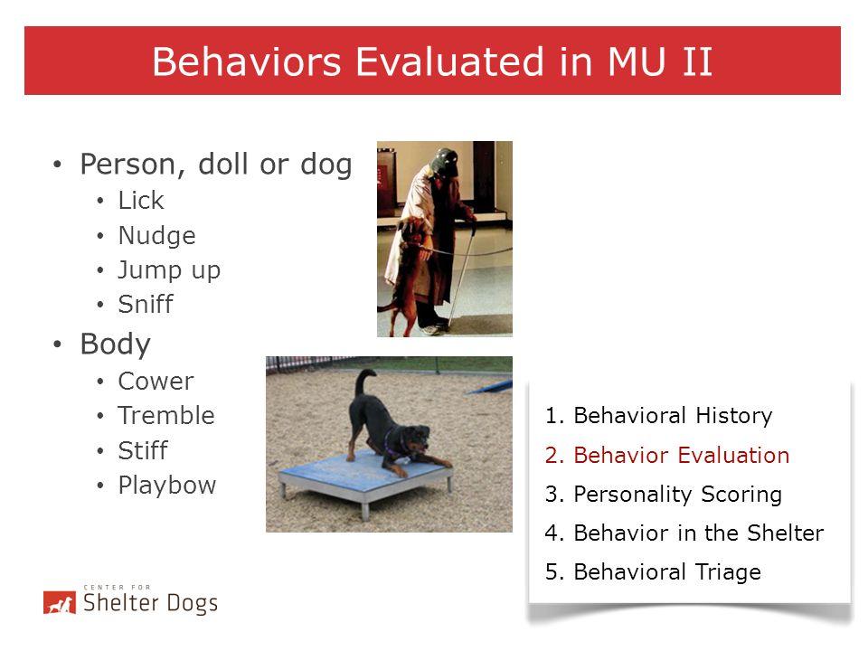 Behaviors Evaluated in MU II
