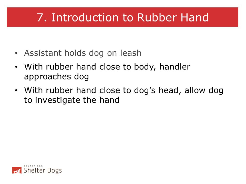 7. Introduction to Rubber Hand