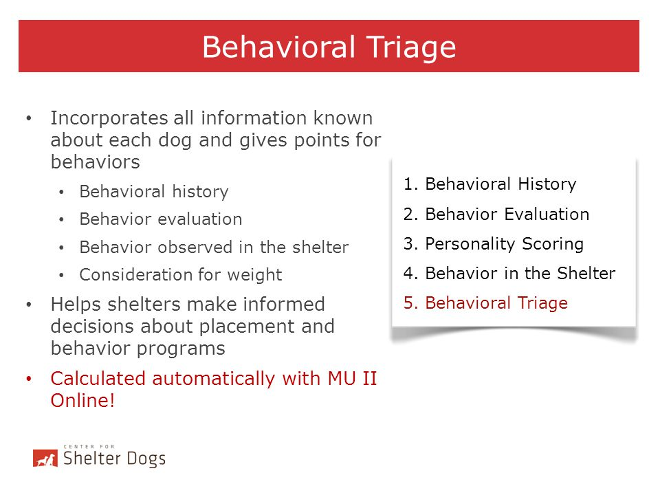 Behavioral Triage Incorporates all information known about each dog and gives points for behaviors.