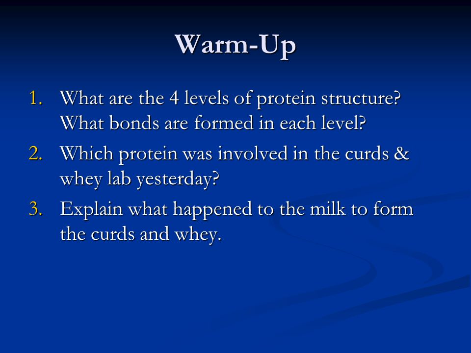 Warm-Up What are the 4 levels of protein structure What bonds are formed in each level