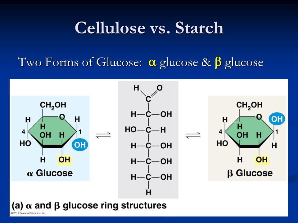 Cellulose vs. Starch Two Forms of Glucose:  glucose &  glucose